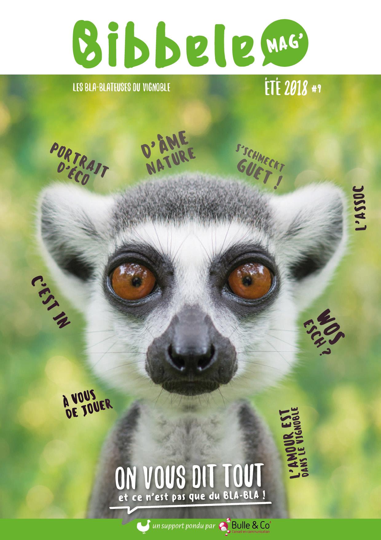 Page de couverture du Bibbele Mag' numéro 9